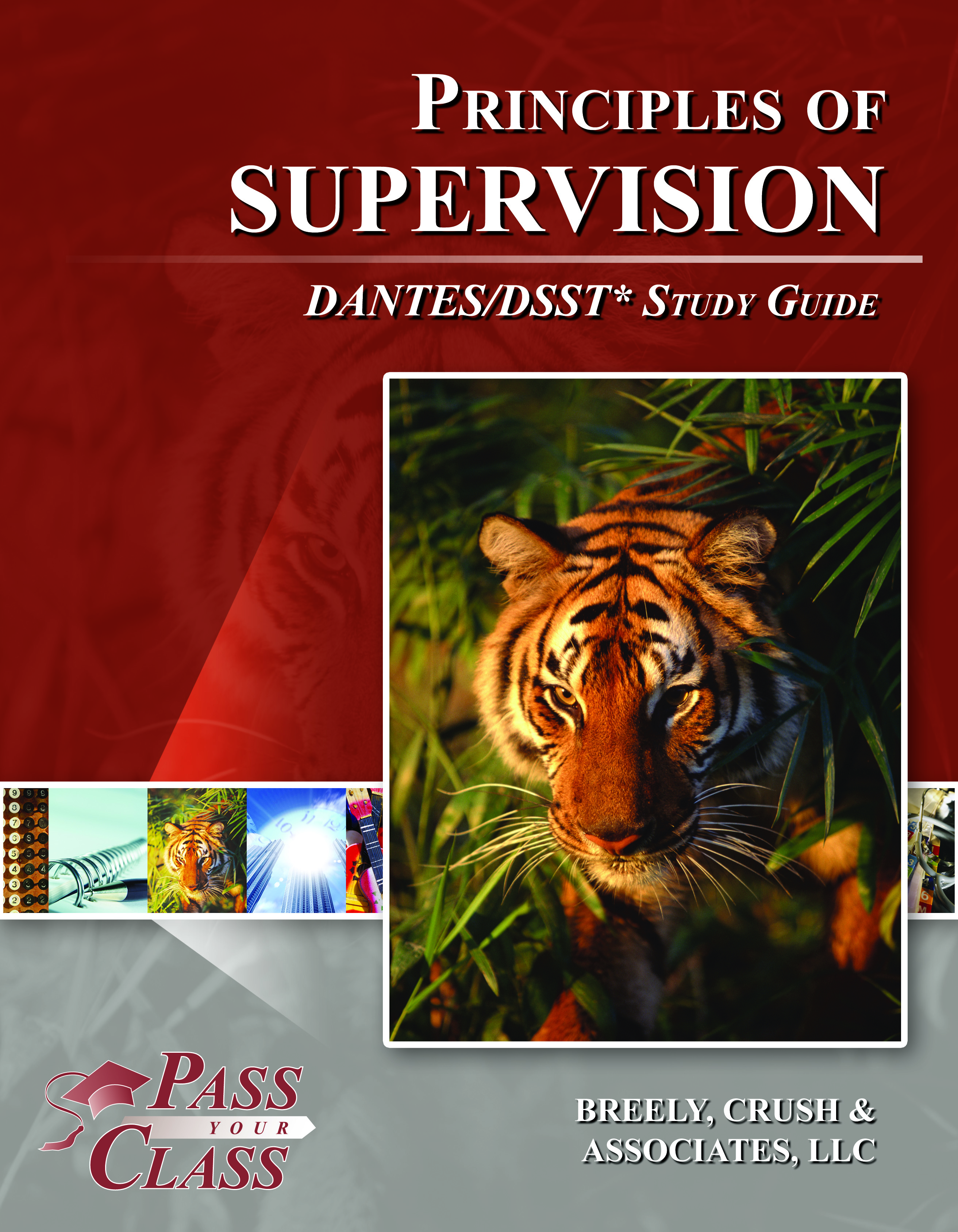 Principles of Supervision DANTES